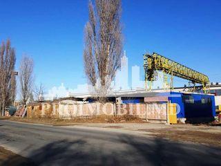 Vînzare producere, str. Transnistria 400 mp.