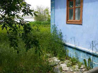 Lot de pământ + casă bătrânească (Dubasari/Goian)