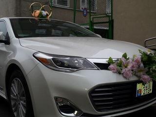 Toyota 250 lei час - всё включено