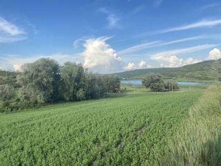 Teren agricol 3,7gh Colonita in apropiere de s.Tohatin