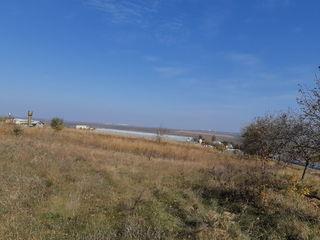 Продается участок 0,281 га, сельскохозяйственного назначения.