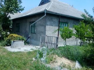продается дом в селе кирсово