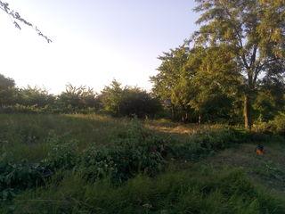 Хороший участок (на поле чудес), в тихом, спокойном месте !,