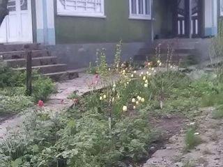 Se vinde casă în satul Cajba 9 km da la Glodeni preț negociabil ,sau schimb