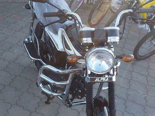Alpha Moto Alpha