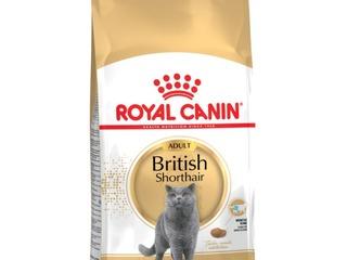 Сухой корм для кошек Royal Canin ! Из Германии !