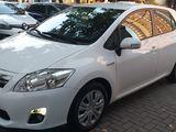 Rent a car / авто прокат