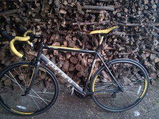 Bind bicicleta Carrera