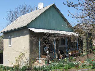Капитальный дом-дача