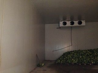 Холодильник 2-камерный /200t,   склад , Мэгдэчешть, +  0.54 га ,