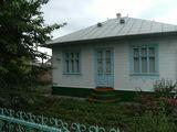 Gospodarie în Satul Gribova
