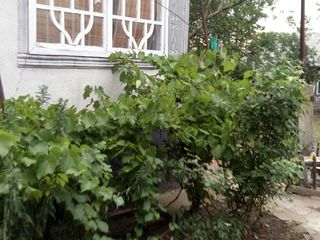 Ghindesti - casa de vanzare + 33 de ari, mobilata