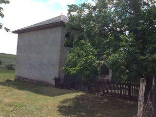 28 соток земли + большой дом. Пырлица, пригород Бельц