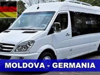 Transport zilnic pasageri si colete Moldova - Germania