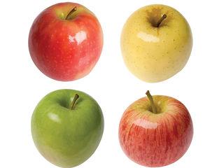 Молдавские яблоки на экспорт от производителя  Ред Чиф, Джонаголд, Симиренко, Флорина, Айдаред и др