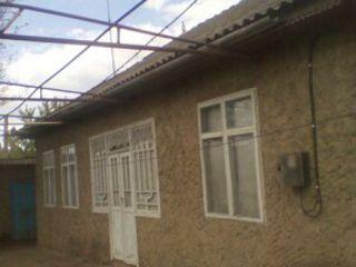 se vinde casa din satul tocuz toate intrebarile la telefon