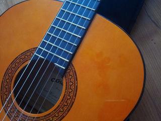 Chitara acustica. Акустическая гитара.