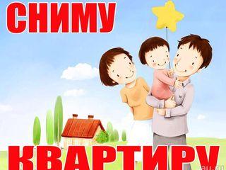 Молодая семья снимет квартиру.