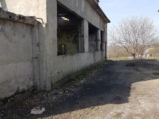 Com. Teleșeuca, extravilan (nr. cadastral - 3444110.009(01-07)