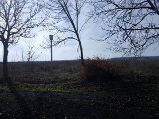 De vinzare teren arabil 2 hectare, prima linie  Danceni