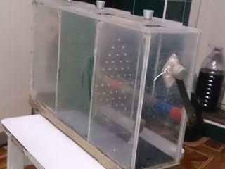 Кана для транспортировке рыбы