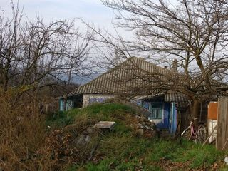 Отличный дом с. Гармацкое, Дубоcсары