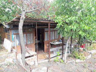 Продам участок в Думбраве
