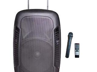 Большая, новая колонка - активная, портативная. Bluetooth/USB/SD/RadioFM. 2900 лей