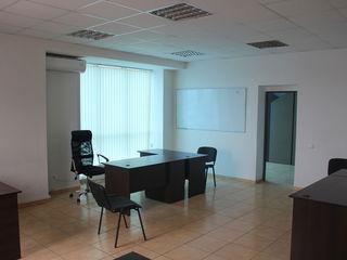 Chirie spatii pentru oficii, 30mp - 40 mp, Riscani, 200 euro