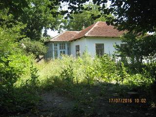 Casa cu 28 sote Magdacesti si 2 esiri