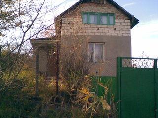 продаю дом -дачу