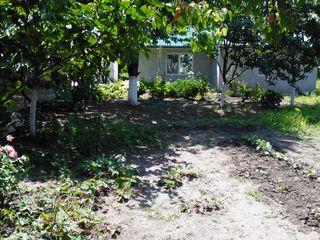 Vând sau schimb pe apartament Vila, bucătărie și teren in Ungheni Deal str Delesti