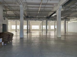 Сдается 1900м2 (в т.ч.писчевое) под производство, склад сект. Чеканы.Промышленная зона! Первый этаж!