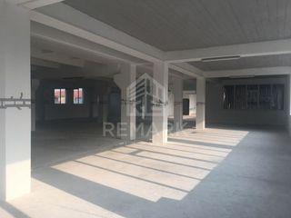 Chirie, Spațiu comercial, Centru, 535 mp, 4 €/mp
