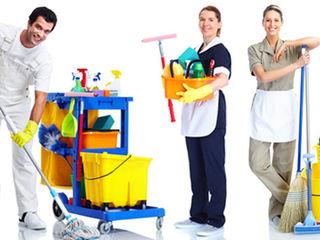 Curățenie în apartamente, case de locuit și birouri