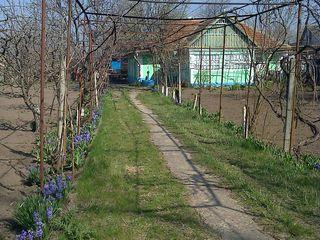 Se vinde casa in satul Speia, raionul Grigoriopol