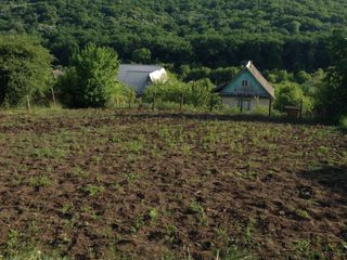 Vind teren de construcție 6 ari (sect Miciurin) 4000 euro