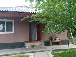 se vinde casa in satul cobani