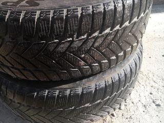 2 шт Dunlop Winter sport 205 55 R16