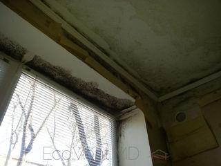 Умная вентиляция в вашем доме , отсутствие плесени.