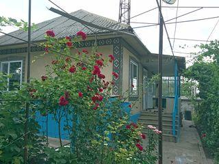 Продам дом в Сынджерее. Торг уместен