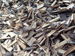 Lemne de foc moale  (plop, tei) (transport gratuit în raza raionului Straseni)