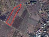 Земельный участок под сельское хозяйство под Кишиневом