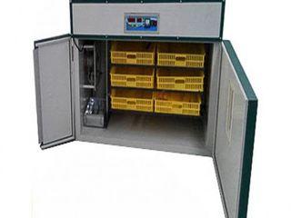 incubator Ms-528 oua de gaina -528 .oua de rata-378. oua de gisca-192.oua de prepelita -1326.