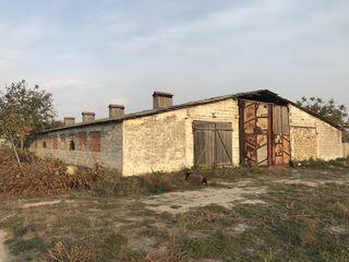 Se vinde construcție industrială, s. Brăviceni, r-nul Orhei
