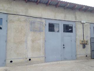Chirie, Ciocana, Depozit, 140 mp, 260 €