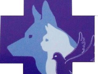 Servicii veterinare / ветеринарные услуги ветеринар