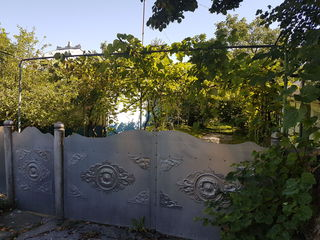 Vind casa, gospodarie perfecta la nordul Moldovei
