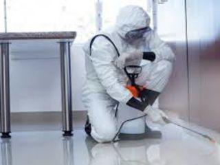Servicii de dezinfectare și igienizare spații!!!