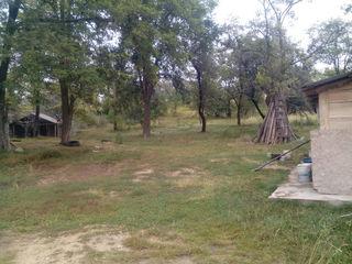 Домик на берегу озера  с 2- мя  гектарами леса
